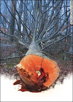 jenz dieckmann, photo manipulation, tree, blood, artscum