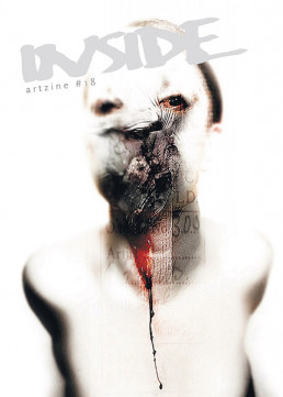 Cover INSIDE artzine 18, Absumaniac, Poland, smashed face, blod, uglyness, Dark Art Magazine
